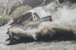 Rally Dakar - De Villiers 01
