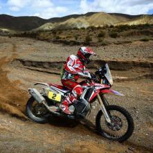 Rally Dakar - Goncalves 01