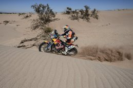Rally Dakar - Meo